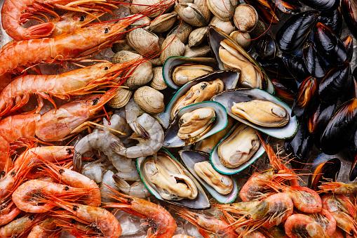 Молюски та ракоподібні