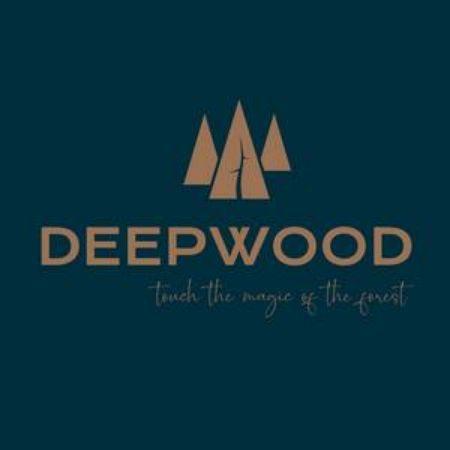 Зображення для постачальника DeepWood